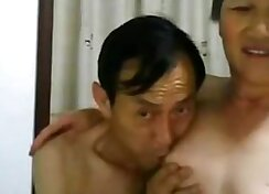 Chinese horse jerking cock in front of me
